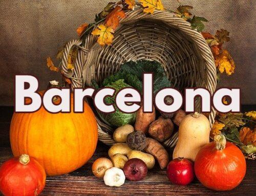 Tiendas veganas Barcelona