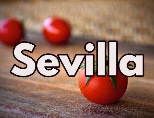 Tiendas veganas Sevilla